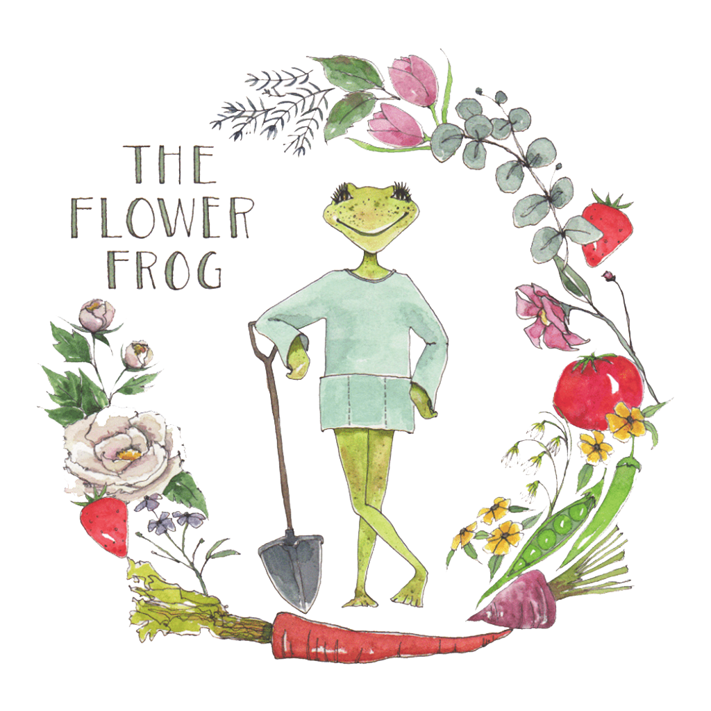 The Flower Frog